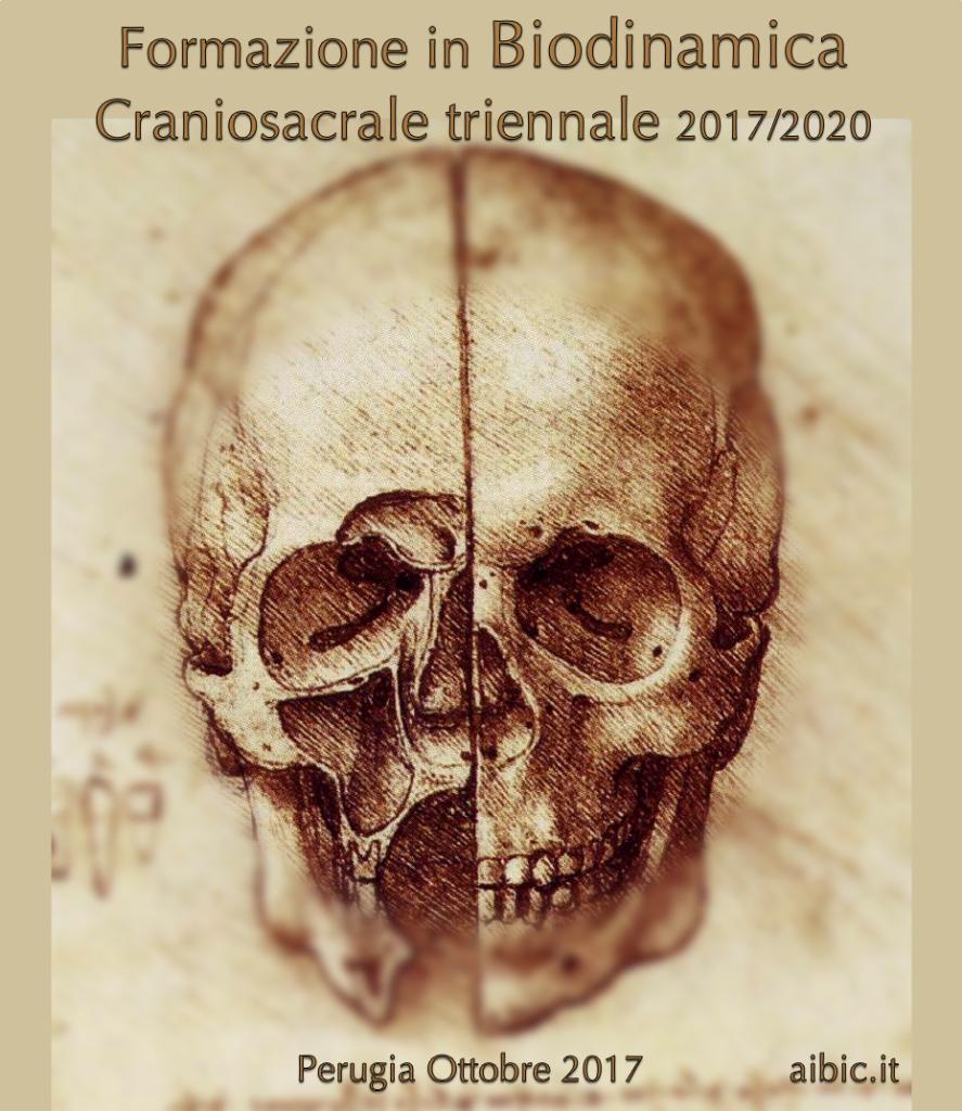 Biodinamica triennale