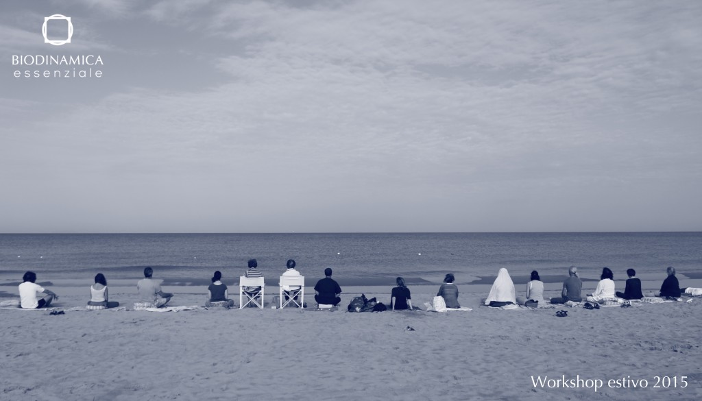 Workshop Spiaggia2 MOD