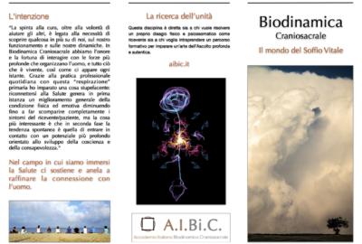 Brochure AIBiC 2017 2:2